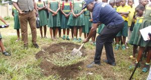 ROTARY CLUB OF UYO URBAN EMBARKS ON TREE PLANTING PROJECT AS PART OF HER CONTRIBUTION TOWARDS PRESERVING THE ENVIRONMENT