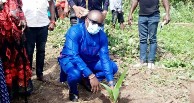 Nyakno Okoibu Flags off coconut day…sues for more investment in coconut cultivation
